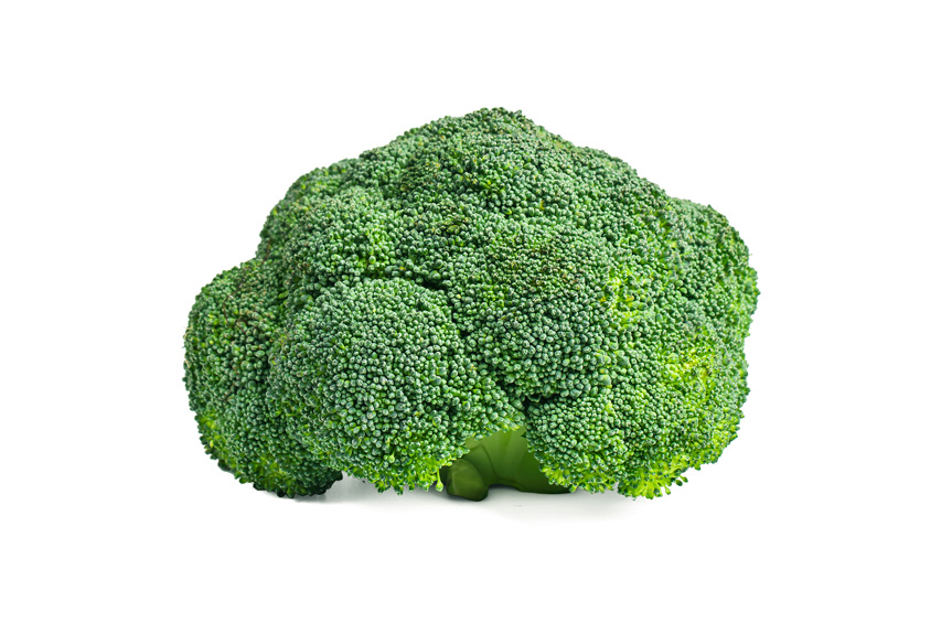 EVG ltd Broccoli