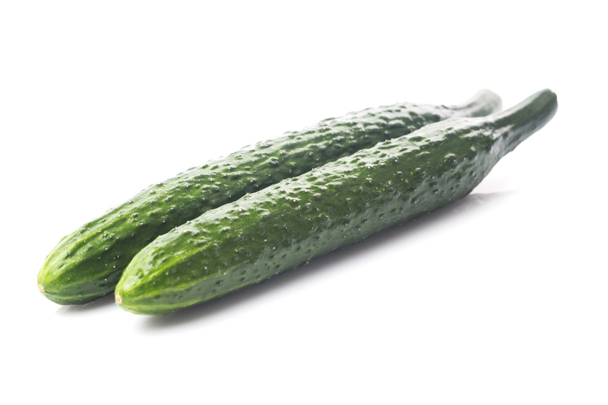 EVG ltd Cucumbers