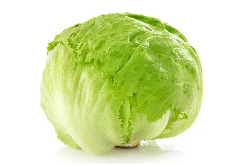 EVG ltd Lettuce