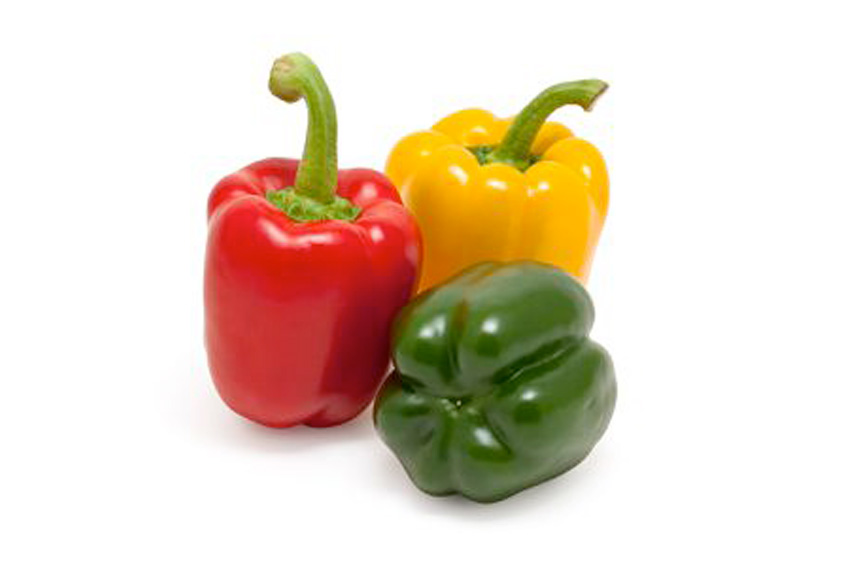 EVG ltd Capsicum