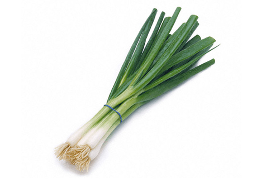 EVG ltd UK Spring Onions